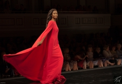 2019 Nashville Symphony fashion Show